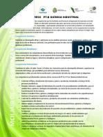 6.- Perfil de Egreso Quimica Industrial 2.16.17