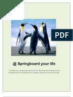 @Springboard Your Life - eBook