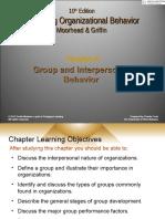 Chapter 9- Group Behavior