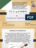 ANOMALIAS ESPERMATICAS