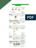 Caracteristicas Organolepticas de Los Alimentos