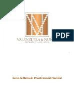 Juicio Revision Constitucional
