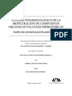 Análisis Fenomenológico de La Biofiltración