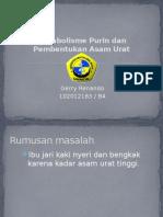 Ppt Blok 11 - Purin