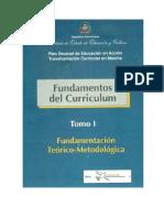 Fundamentosdelcurriculo1.pdf