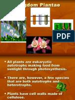 AP Kingdom Plantae.ppt