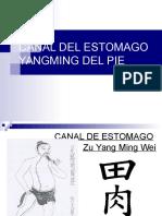 Canal Del Estomago Acupuntura