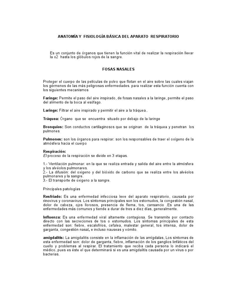 ANATOMÍA Y Fisiologia Respiratorias