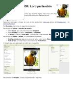 loro_appinventor.pdf