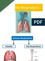 9.ppt.s.respiratorio_0