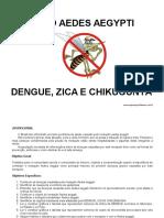 Projeto Aedes Aegypti