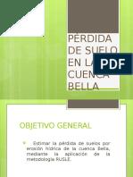 PÉRDIDA DE EROSION DEL SUELO.pptx
