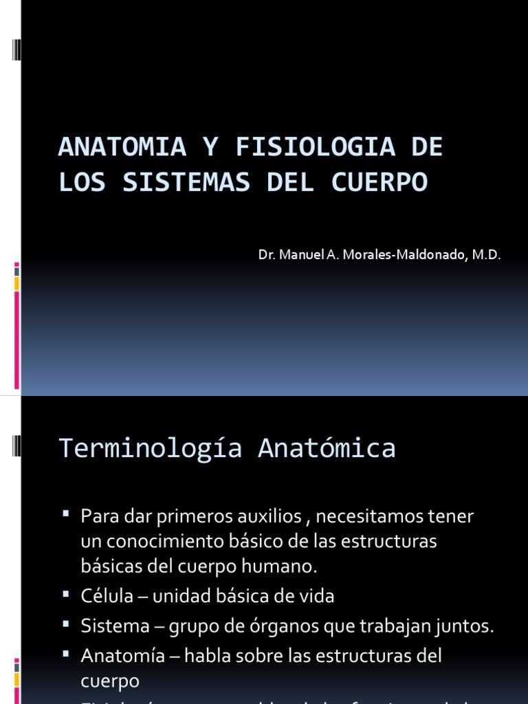 Anatomia y Fisiologia Del Cuerpo