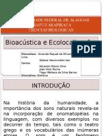 Bioacústica e Ecolocalização