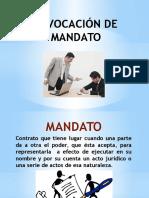 REVOCACIÓN DE MANDATO irene.pptx