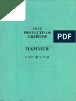 TEST PROYECTIVOS GRAFICOS IIAMMER CAP. III Y VIII