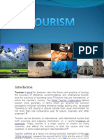 131jk552683-Tourism.docx new.docx