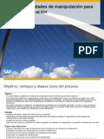 226 ERP606 Process Overview ES XX