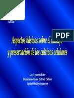 L Brito INHRR.pdf