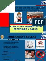 1. Conceptos Generales de Seguridad y Salud (1)