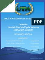 Boletin Intibuca y Lempira