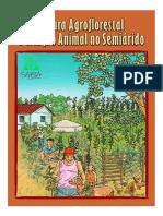 Agricultura Agroflorestal No Semiarido_2010