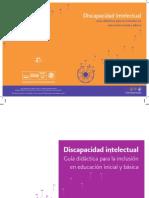 DiscapacidadIntelectualME.pdf