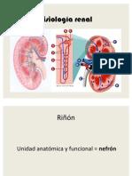 Fisiología_renal