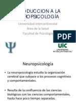 introduccicionneuropsicologiada (2)