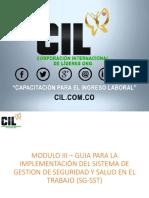 Modulo III Guia Para La Implementacion Del SG SST