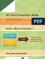 P6 Anprod Total Productivity Model