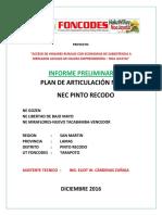 Informe Preliminar Plan Articulacion Nec Pinto Recodo