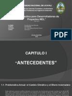Tema 1_Guía Practica para Desarrolladores de Proyectos MDL.pptx