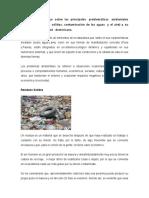 Tarea 3, Medio Ambiente y Sociedad
