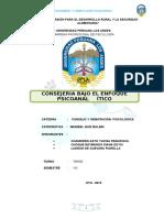 152304659 Monografia de Consejeria Por Psicoanalisis