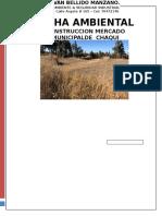 Ficha Ambiental Mercado