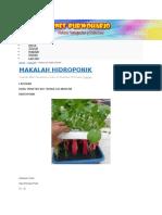 hidroponik.docx
