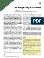 Ketone Body as Metabolites