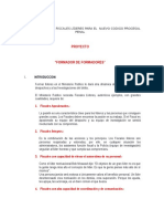 1 Proyecto Formando Fiscales Líderes
