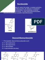 11Nucleotide Acizi Nucleici 2013