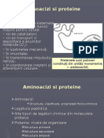 07Proteine_aminoacizi