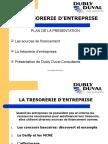 Dubly Duval-Solutions Pratiques de Tresorerie d Entreprise-2