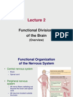 Lecture 2 - Functional Divisions of the Brain _1