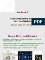Lecture 7 - Functional Units of the NS 3