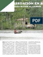 Deforestacion en Bolivia Una Amenaza Mayor Al Cambio Climatico