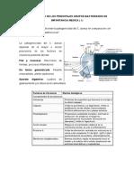 cuestionario de microbiologia practica 8.docx