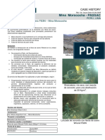 Case_Sh FS3N_ Argentum_Morococha-shotcrete.pdf