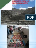 Estrategia de Conservacion in Situ