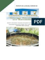 Proyecto de La Escuela Superior de Tapachula