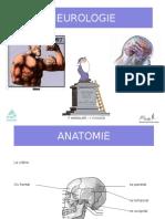 neurologie prezentare